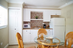 Tropical Efficiencies - Kitchen (1)